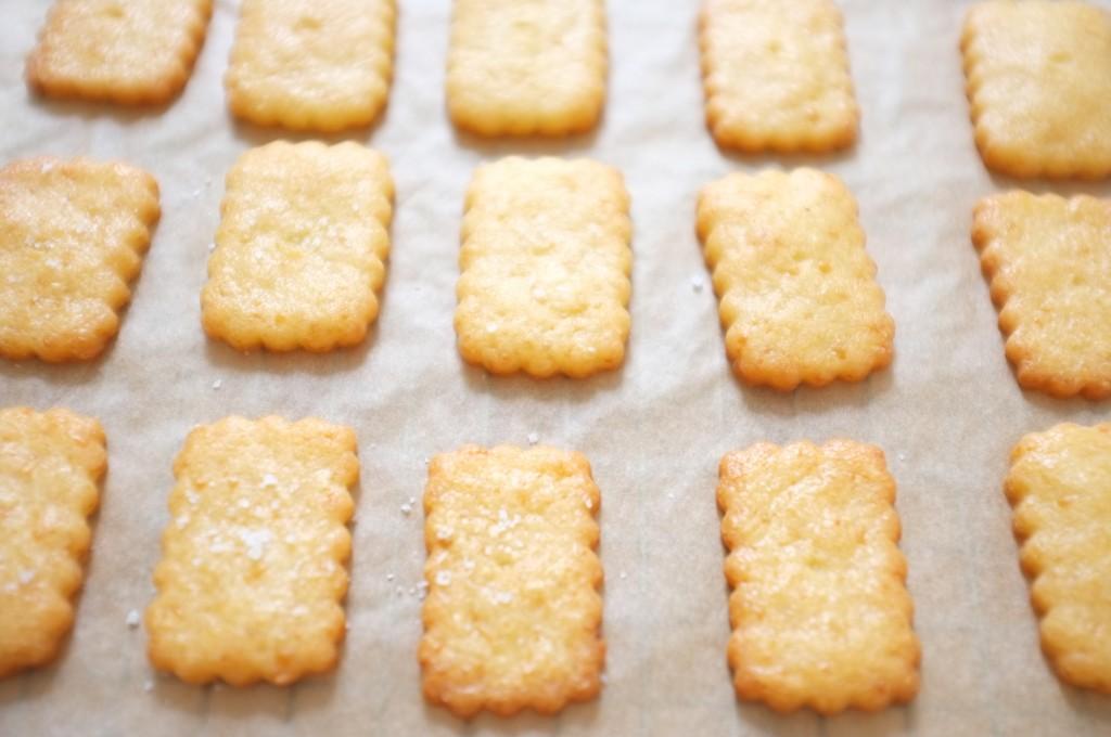 Après cuisson, les crackers sont gonflés et dorés, la belle couleur du cheddar resort