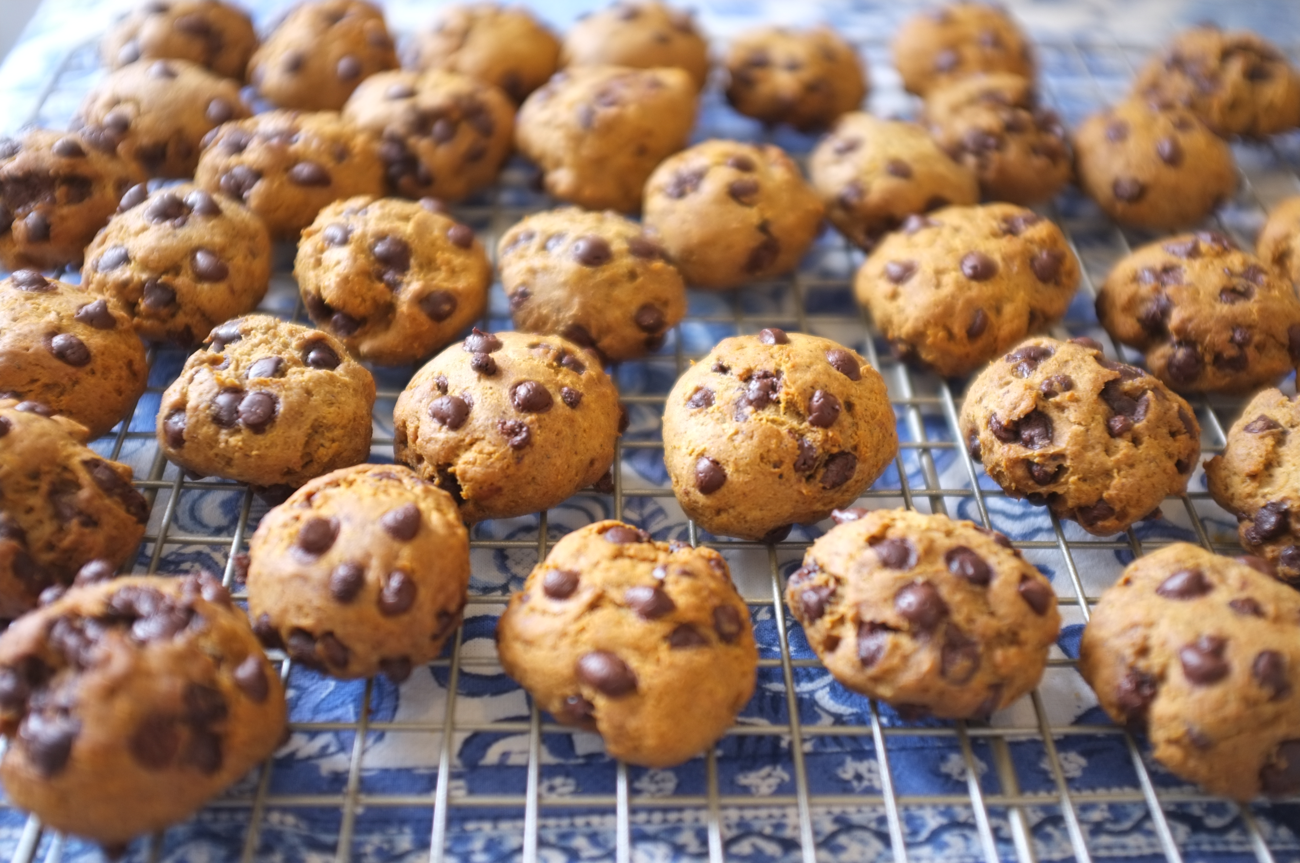 Recette gateau au chocolat farine sarrasin