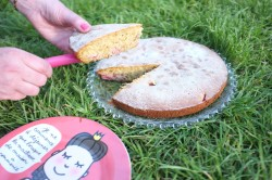 Recette sans gluten de gâteau amande-millet aux fraises