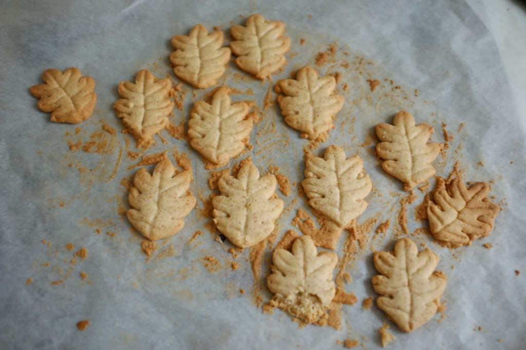 Les biscuits sa,s gluten à la noisette, à la sortie du four