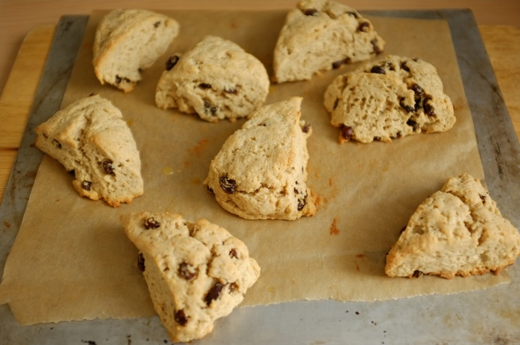 Les scones sans gluten raisin et cannelle à la sortie du four