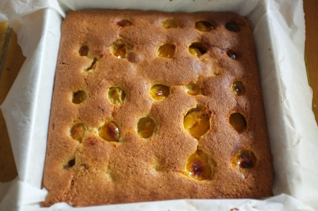 Le gâteau aux prunes jaunes à la sortie du four, il est bien doré par la farine de millet et la poudre d'amande.