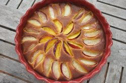 Recette sans gluten de gâteau amande et brugnon